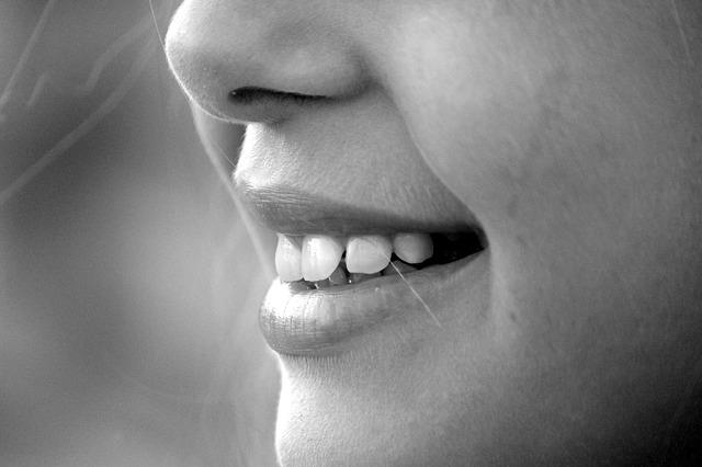 美しくなる食事は歯と同じ比率で食べること