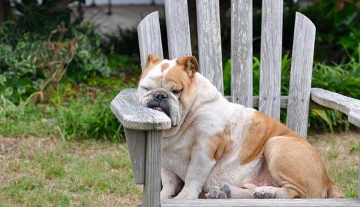 疲れはスキンケアの大敵!上手な疲労回復方法を知ろう